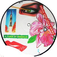 A Flock Of Seagulls - Space Age Love Song/Windows 7inch picture disc