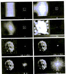 Albert Einstein collage