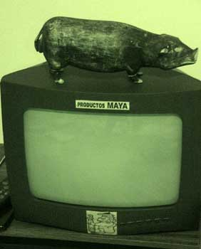 the Mayans invent television...