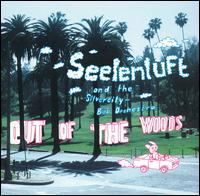 Seelenluft - Out Of The Words 12inch x2 on Klein (2002)