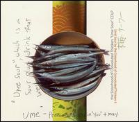 Sisterhood Of Convoluted Thinkers - Ume Sour on 555 (2001)